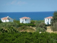 Secluded Orchard villa next to beach in Polis Cyprus