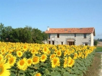 L'Etang - a superb French country house with private pool & lovely panoramic views in southern Charente/ Dordogne, France. WIFI AVAILABLE